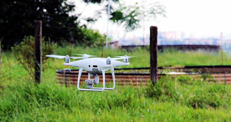 Drones podem ajudar na contagem de gado