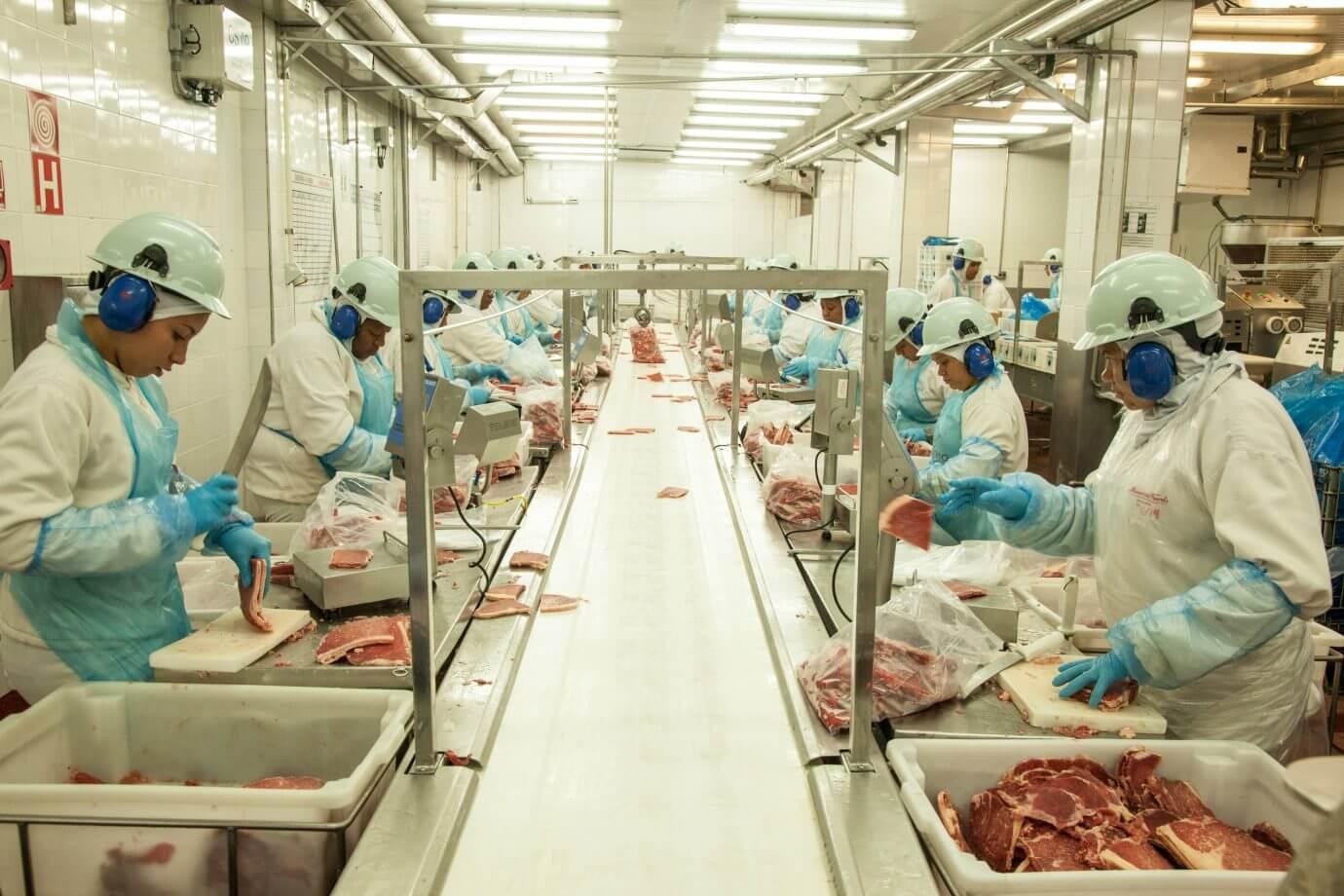 Arábia Saudita habilita oito novos frigoríficos brasileiros para exportação de carne bovina Comércio exterior